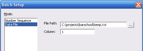 print-batch-datafile-setup